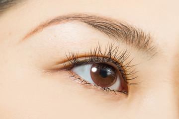 アジア人 つけまつげとブラウンカラーコンタクトレンズ Eyes of the Asian woman