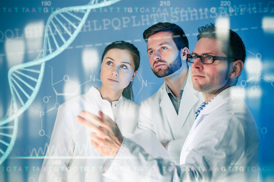 Group of geneticists working at media screen