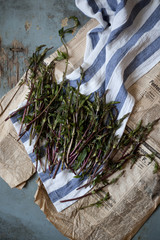 group of fresh wild asparagus on table with cloth