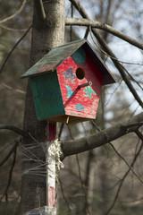 bright birdhouse