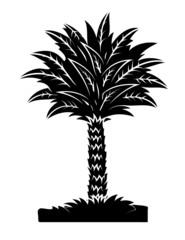 Palm Tree Black Shape
