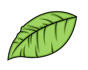 Green Vector Leaf