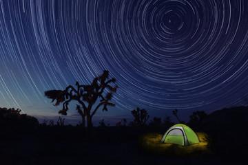Camping at Night in Joshua Tree Park
