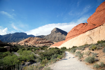 Changing Colors / Red Rock Canyon in Nevada