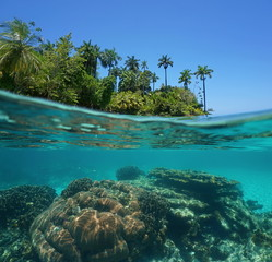 Split shot of tropical island and coral reef