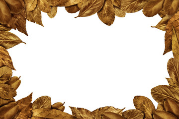 Autumn Leaves vintage frame