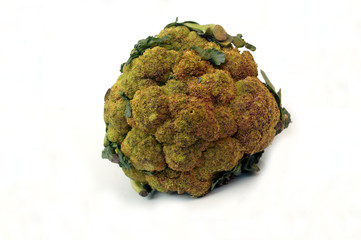 Broccoli vegetable image showing the top