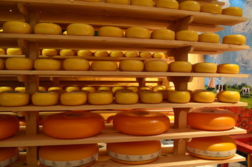 Cheese factory in Holland