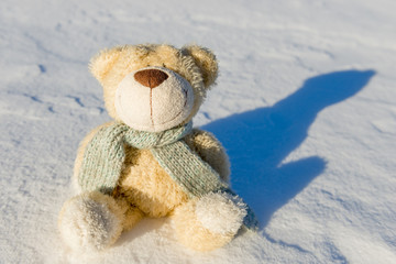 teddy bear with scarf sitting in the snow