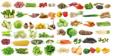 Foto op Plexiglas Groenten set of vegetable on white background