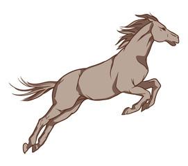 Jumping horse. Vector hand drawn illustration