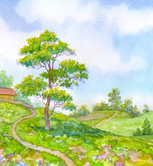 Watercolor landscape summer day. Tall oak tree beside the path