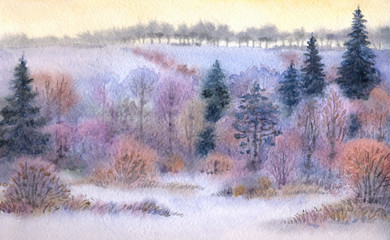 Watercolor landscape. Winter forest in the valley
