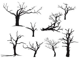 Dry Tree - Silhouette