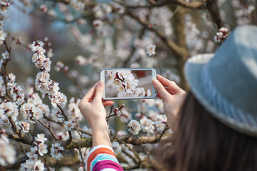 Woman in hat photographed on a smartphone flowering spring tree