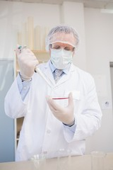 Scientist doing experimentations in petri dish