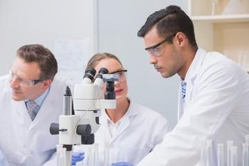 Scientists talking together