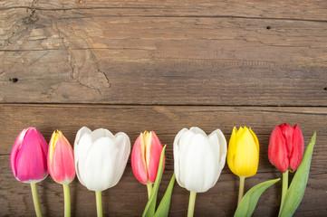 tulpen holzhintergrund