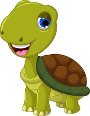 cut cartoon turtle for you design