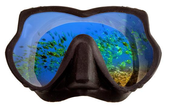 Underwater landscape is reflected  mask glasses for snorkeling