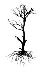 Black Dead Tree Shape
