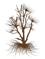 Dead Tree Drawing Vector