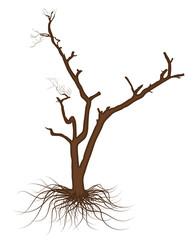 Retro Graphic Dead Tree