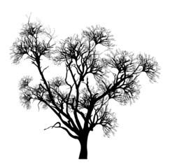 Spooky Dead Tree Vector Illustration