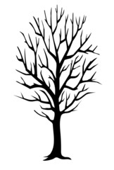 Winter tree silhouette