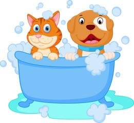 Cute dog and cat bath
