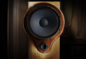 Natural wood sound system - oak tree body and yew tree front