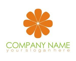 flower logo image vector