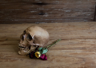 Skull on old wooden floor