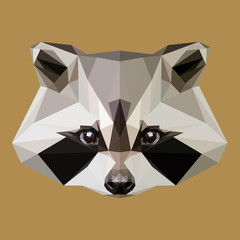 Low poly raccoon vector