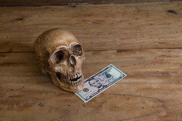 Skull on old wooden floor with a dollar.