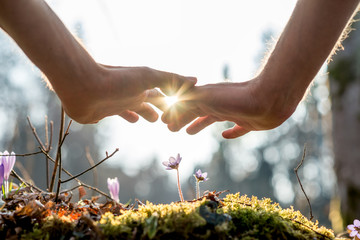 Foto op Aluminium Natuur Hand Covering Flowers at the Garden with Sunlight