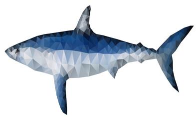 Polygon shark