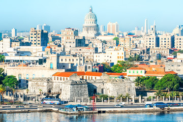 Garden Poster Havana General view of Old Havana