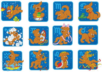 Zodiac signs with a funny brown pup playing
