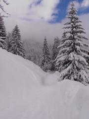 Mont Blanc area 1