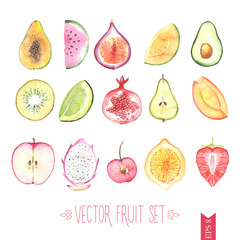 Watercolor vector fruit set