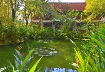 asian tropical garden