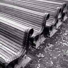 row of wooden benches in park