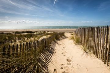 Dünen am Meer, Carteret, Normandie - Frankreich Fototapete