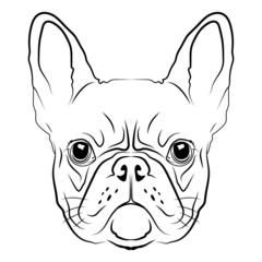 French Bulldog head logo or icon in white.