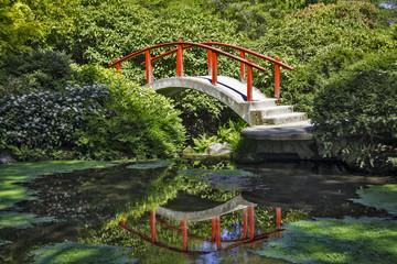 Reflections at Kobota Gardens