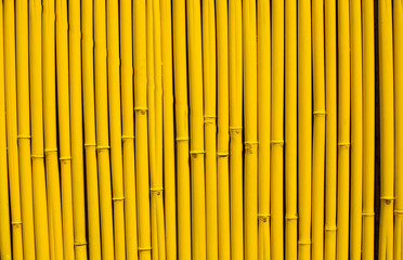 bamboo background of bamboo sticks arranged in a row