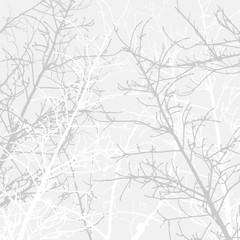 Branches texture pattern. Soft background.