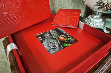 red wedding photo book album