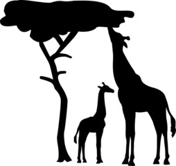 Giraffe Silhouette with tree